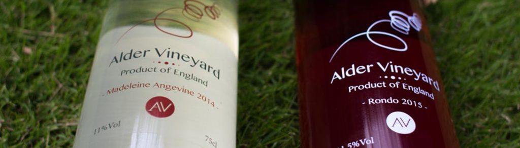 SWVA award winning wines