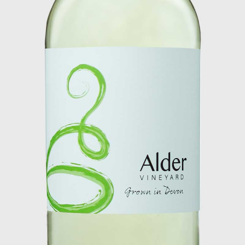 Madeleine Angevine from our vineyard