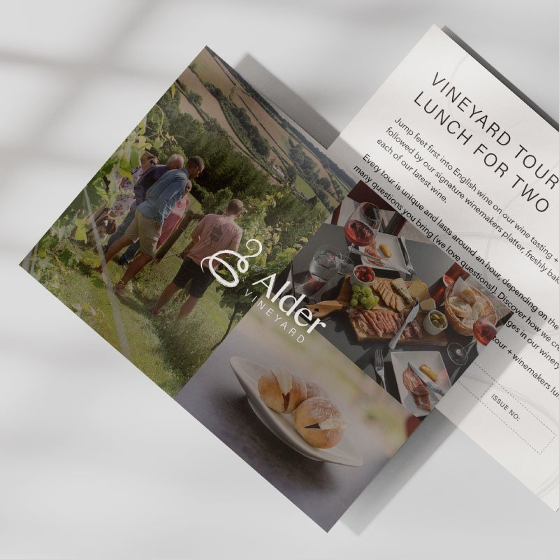 Vineyard tour & winemakers lunch for two